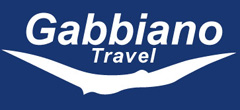 Maxi taxi partner - gabbiano travel